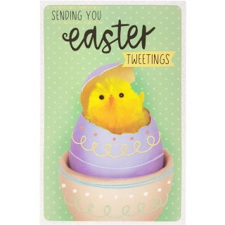 Chick - Easter Card