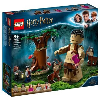 LEGO Harry Potter Umbridge's Encounter