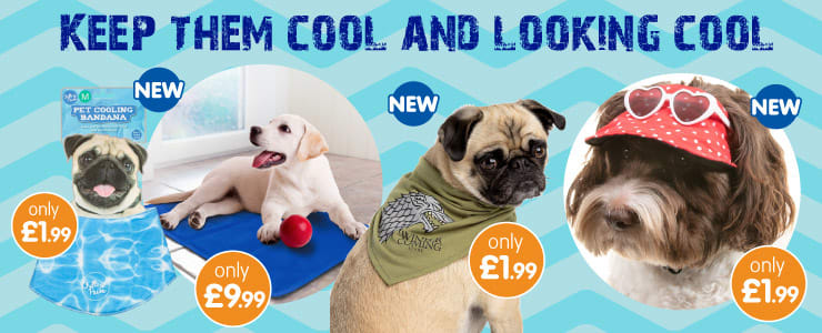 Keep your dogs cool with B&M.