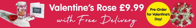 Valentine's Luxury Rose only £9.99